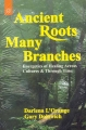 Ancient Roots, Many Branches By Darlena L. Orange
