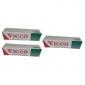 Vicco Toothpaste 25g